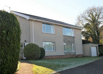 Thumbnail 2 bed flat to rent in Royal Oak Road, Dewen Fawr, Swansea
