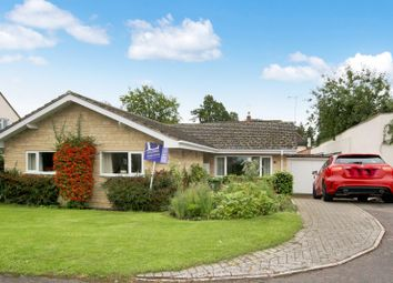 Thumbnail 3 bed bungalow to rent in Deakin Close, Swindon Village, Cheltenham