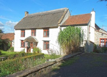 Thumbnail 5 bed detached house for sale in Newtown, Buckland St. Mary, Chard