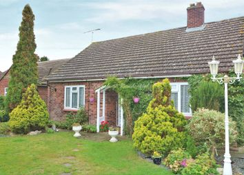 Thumbnail 4 bed detached bungalow for sale in School Road, Langham, Colchester, Essex