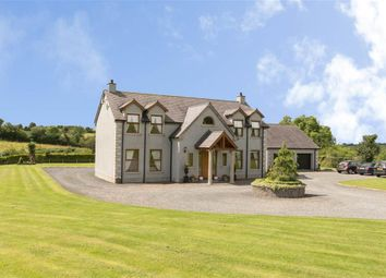 Thumbnail 4 bed detached house for sale in Backnamullagh Road, Dromore