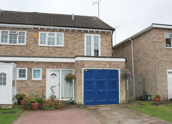 Thumbnail 4 bedroom semi-detached house for sale in Thornwood, Colchester