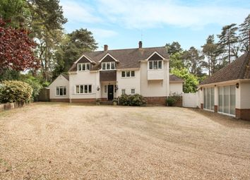 Thumbnail 4 bed detached house to rent in Botany Hill, The Sands, Farnham