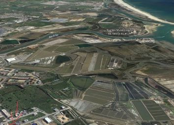 Thumbnail Land for sale in Santa Maria E Santiago, Faro, Portugal