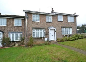 Thumbnail 4 bed terraced house to rent in Arrow Road, Colchester