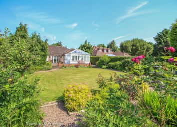 Thumbnail 4 bed detached bungalow for sale in Main Road, Ansty, Coventry