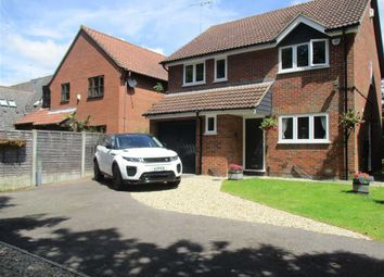 Thumbnail 4 bed detached house for sale in Pampas Close, Highwoods, Colchester