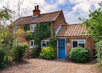 Thumbnail 3 bed detached house for sale in Common Road, Aldeby