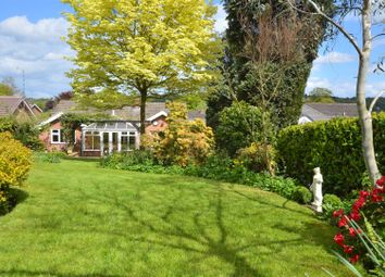 Thumbnail 4 bed detached bungalow for sale in Hall Farm Road, Duffield, Duffield