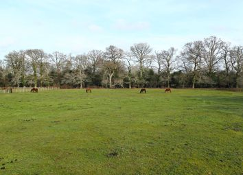Thumbnail Land for sale in Cadnam, Southampton, Hampshire