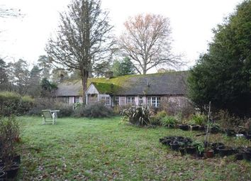 Thumbnail 2 bed detached bungalow for sale in Sandy Lane, Rushmoor, Farnham