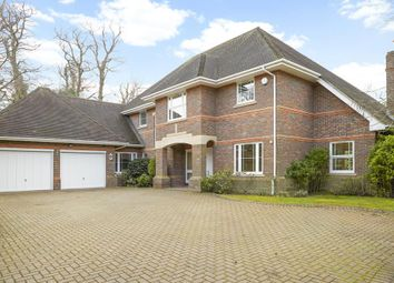Thumbnail 5 bed detached house to rent in Blue Cedars Place, Cobham