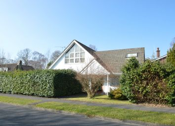 Thumbnail 3 bed detached bungalow to rent in Sycamore Avenue, Hiltingbury, Chandler's Ford