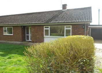 Thumbnail 3 bed bungalow to rent in Ploughmans Drove, Thetford