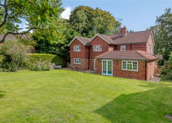 Thumbnail 5 bed detached house for sale in Blounce, South Warnborough, Hook, Hampshire