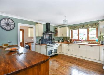 Thumbnail 5 bed detached house for sale in Abbeycwmhir, Llandrindod Wells