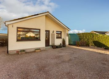 Thumbnail 3 bed bungalow for sale in Berrydale Avenue, Blairgowrie, Perthshire