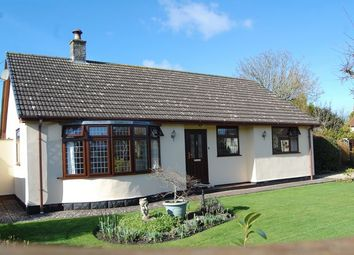Thumbnail 3 bed detached bungalow for sale in Fishers Lane, Mark, Highbridge