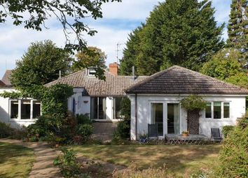 4 bed detached bungalow for sale in Station Road, Cogenhoe, Northampton NN7
