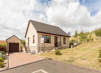 Thumbnail 3 bed bungalow for sale in Coronation Avenue, Scone, Perth