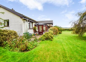 Thumbnail 3 bed detached bungalow for sale in The Croy, Cairnie Road, St Madoes, Perth