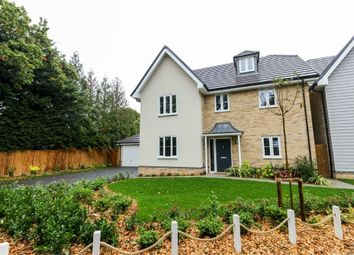 Thumbnail 5 bed detached house to rent in Boudicca Gardens, Honey Lane, Waltham Abbey, Essex