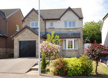 Thumbnail 4 bed detached house to rent in Seaview Place, Bridge Of Don, Aberdeen