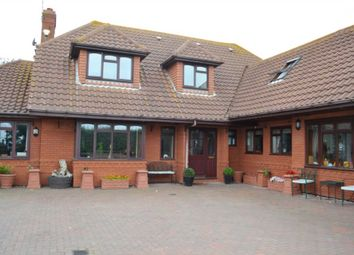 Thumbnail 5 bed detached house to rent in California Avenue, Scratby, Great Yarmouth