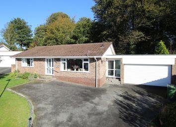 Beech Grove, Brecon LD3, powys property
