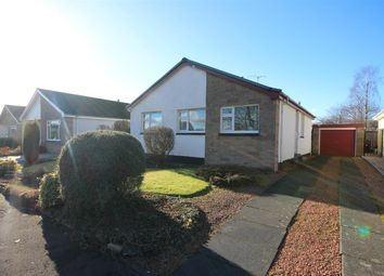 Thumbnail 3 bed bungalow for sale in St. Thomas's Place, Stirling