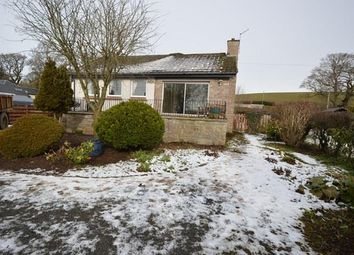 Thumbnail 4 bed bungalow to rent in The Manse, Pitcairngreen