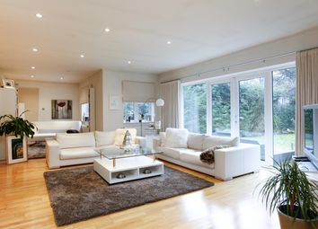 Thumbnail 6 bed detached house to rent in Traps Lane, New Malden