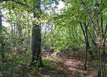Thumbnail Land for sale in South Street, East Hoathly, Lewes
