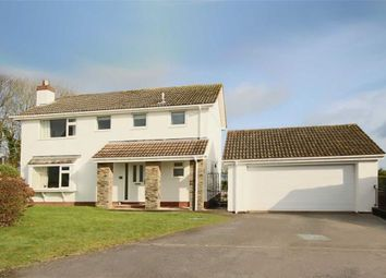 Thumbnail 4 bedroom detached house for sale in Summercourt Way, Summercombe, Brixham