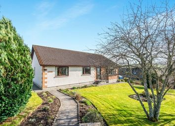 Thumbnail 3 bed bungalow for sale in Macleod Place, Dingwall