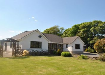 Thumbnail 4 bed bungalow to rent in Ludchurch, Narberth