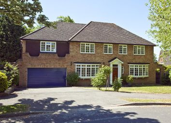 Thumbnail 6 bed detached house to rent in Church Meadow, Long Ditton
