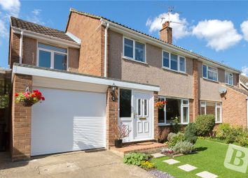 Thumbnail 4 bed semi-detached house for sale in Rignals Lane, Chelmsford, Essex