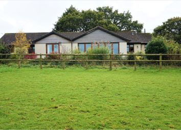 Thumbnail 3 bedroom detached bungalow for sale in West Lane, Winkleigh