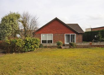 Thumbnail 3 bedroom detached bungalow to rent in Hawkswood Drive, Hailsham
