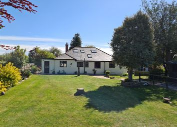 The Hollies, Lower Road, Staple CT3. 6 bed detached house