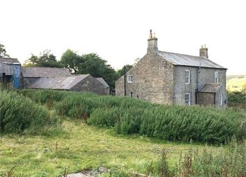 Thumbnail 4 bed detached house for sale in Small Burns Farm, Carrshield, Northumberland.