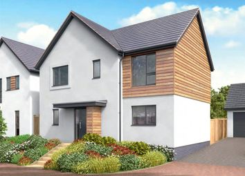 Thumbnail 4 bed detached house for sale in Moor View, Marldon, Paignton