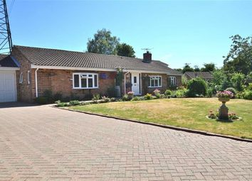 Thumbnail 4 bed detached bungalow for sale in Grange Road, Blunham, Bedford