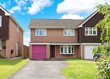 Thumbnail 5 bedroom semi-detached house for sale in The Thicket, Romsey, Hampshire