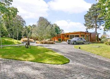 Thumbnail 4 bedroom bungalow for sale in Westwood Road, Windlesham, Surrey