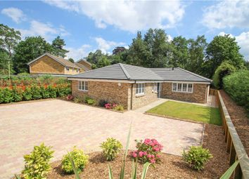 Thumbnail 4 bed detached house for sale in Old Portsmouth Road, Camberley, Surrey