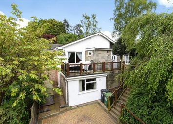 Thumbnail 4 bed bungalow for sale in Frimley, Camberley