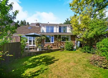 Thumbnail 3 bedroom detached house for sale in Withdean Road, Brighton