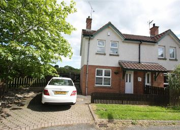 Thumbnail 2 bedroom semi-detached house to rent in Windmill Walk, Ballynahinch